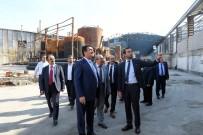 MUSTAFA DÜNDAR - Dündar Yanan Fabrikayı Ziyaret Etti