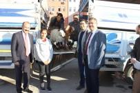 Karaman'da Genç Çiftçilere Keçileri Teslim Edildi