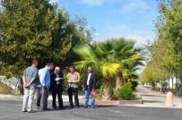 ATATÜRK HEYKELİ - Adıyaman Üniversitesi Merkez Külliyesinin Yeşil Görüntüsü Dikkat Çekiyor