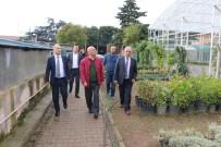 ALTıNOK ÖZ - Başkan Altınok Öz Açıklaması 'Kartal'a Hobi Bahçesi Geliyor'