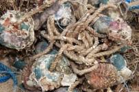 YEŞILOVACıK - Denizler Terk Edilmiş Av Araçlarından Temizlendi