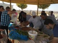 Mülteci Öğrenciler İçin Piknik Etkinliği