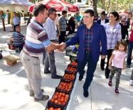 ORGANİK PAZAR - Organik Pazar Antalyalıları Bekliyor