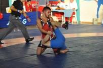 İSMAIL AYDıN - Balkan Güreş Şampiyonası Başladı