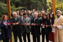 ASLAN AVŞARBEY - Dünyanın Dört Bir Yanından Bitkiler 'Anadolu Arboretum'da Buluştu