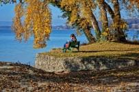 YEŞIL ÇAY - Sonbaharda Sağlıklı Beslenme Kişinin Vücut Direncini Arttırıyor