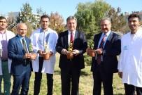 TALAS BELEDIYESI - Talas Belediyesi İle Erciyes Üniversitesi 'Talas'ın Karadut'Unu Yaşatacak