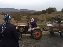 Traktörlü Nine Gençlere Taş Çıkartıyor