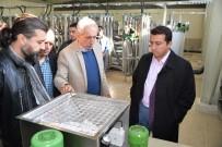 ATIK SU ARITMA TESİSİ - Başkan Bakıcı Söğüt Atık Su Arıtma Tesisi'nde İncelemelerde Bulundu