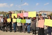 ŞENOL TURAN - Üniversiteli Öğrenciler, Oltu'daki 'Engellere' Dikkat Çekti
