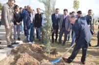 MEHMET AKTAŞ - Şırnak'ta Protokol Üyeleri Ve Vatandaşlar Fidan Dikti
