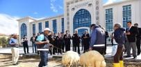 SELAHATTIN GÜRKAN - Battalgazi Belediyesi Artık Yeni Yerinde