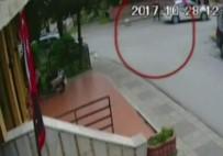 ERDEMIR - O Cani Tutuklandı