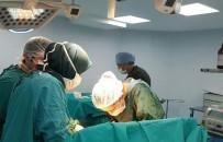TÜRK BÖBREK VAKFI - Organ Nakillerinin Yüzde 78'İ Canlıdan