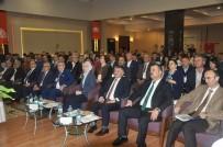 SÜLEYMAN ÖZDEMIR - Türkiye 15 Milyon Ceviz Ağacından 200 Bin Tonu Aşkın Ceviz Elde Ediyor