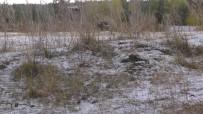 Ardahan'a Karla Karışık Dolu Yağdı