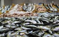 27 EYLÜL - Çanakkale'de Balık Fiyatları El Yakıyor