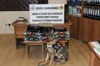 JOHANNESBURG - Trabzon Havalimanı'nda Piyasa Değeri 307 Bin TL Olan 15 Kilo 371 Gram Esrar Ele Geçirildi