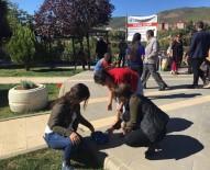 SEYIT RıZA - Tunceli'de Sokak Hayvanları Koruma Günü Etkinlikleri