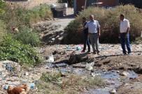 Bin Nüfuslu Köy Sorunlarına Çözüm İstiyor