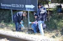 ESKIŞEHIR OSMANGAZI ÜNIVERSITESI - Ceviz Toplarken Elektrik Akımına Kapıldı