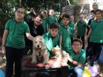 SıĞıNMA - Küçük Öğrencilerin Büyük Hayvan Sevgisi