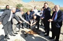 ZEYTIN DALı - Mardin'de 'Zeytin Gen' Bahçesi Kuruldu