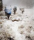 SOĞUK HAVA DALGASI - Mehmetçik zorlu doğa şartlarında teröristlere göz açtırmıyor
