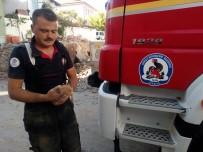 YAVRU KEDİ - Hafriyat Altında Kalan Yavru Kedi Kurtarıldı