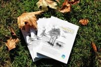 SAKARYA ÜNIVERSITESI - 17. Uluslararası Sapanca Şiir Akşamları Başlıyor