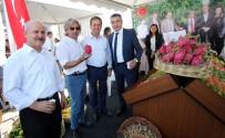 MEHMET AKıN - Çukurova'nın Tarımsal Ürünleri Lezzet Festivali'nde Sergilendi