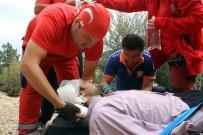 MEDİKAL KURTARMA - Dal Kesmek İçin Çıktığı Ağaçtan Düşüp Yaralandı