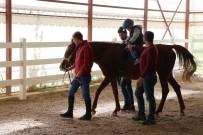 OTIZM - Engelli Çocuklara At Üstünde Terapi