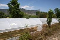 GÜNEŞ ENERJİSİ - Orman Ve Su İşleri Başkanlığı Eskişehir'deki Orman Mahallelerinde Yaşayan Vatandaşlara Destek