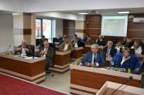 TERMİK SANTRAL - Başkan Albayrak, Termik Santral Toplantısına Katıldı