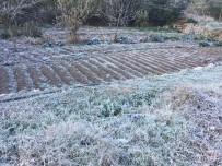 Büyükorhan'a Kar Yağdı