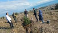 KURUPELIT - Mete Kalkavan Babasının Anısına Ağaç Dikti
