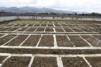 UZUN ÖMÜR - Tekkeköy'de Mezarlık Yeri Sorunu Çözüldü
