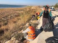 BEYŞEHIR GÖLÜ - Beyşehir'de Sahil Şeridi Temizliği