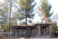 Hani Belediyesi 35 Yıllık Çam Ağacını Kesmemek İçin Projede Değişiklik Yaptı