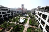 SOKAK HAYVANLARI - İzmir'de Mezat Günleri Başlıyor