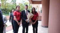 ERDOĞAN BEKTAŞ - Rize'de İngilizce Öğreniminde En Başarılı Okul Belirlendi