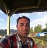 GÜZELYAYLA - Üstüne Ağaç Yuvarlanan Orman İşçisi, Hayatını Kaybetti
