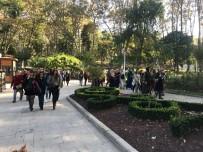 BOĞAZ TURU - Kulp Belediyesi İlçe Kadınları İçin İstanbul Gezisi Düzenledi