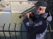 BALIK TUTMAK - Nehirde Su Kesilince Binlerce Balık Telef Oldu