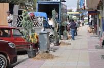 Sorgun Belediyesi 150 Adet Fidan Dikti