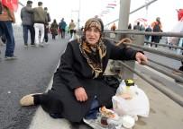 SOKAK KÖPEĞİ - 15 Temmuz Şehitler Köprüsü Üzerinde Kahvaltı Yaptılar