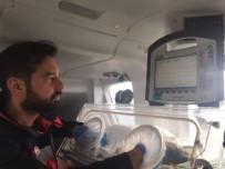 ÇOCUK HASTALIKLARI - Ambulansta Doğan Bebek Hava Ambulansı İle Hastaneye Kaldırıldı