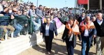 İZMIR MARŞı - Başkan Çerçioğlu, Atça Boğa Güreşlerine Katıldı