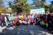 VUSLAT - Beyşehir'de Oryantiring Yarışları Heyecanı